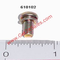 Pan Head Bolt (M6x14) & Washer