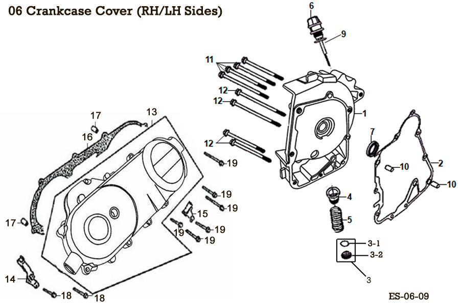 Crankcase Cover (RH and LH Sides)